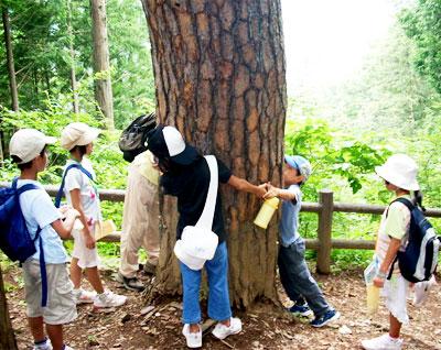 おくたま森林セラピー 大人と子どもの森じかん