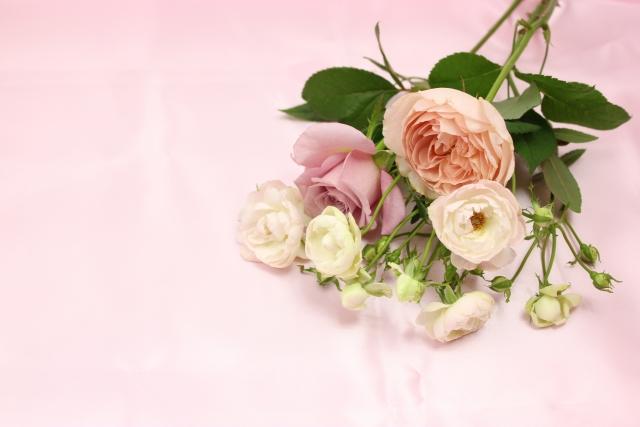 切り花を長く楽しむコツ